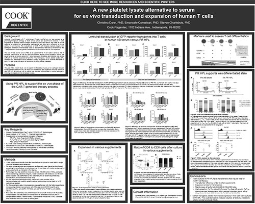 A new platelet lysate alternative to serum for ex vivo transduction and expansion of human T cells